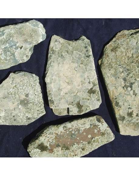 Piedra Musgo